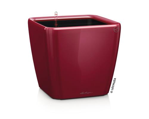 Pflanzkübel Lechuza Quadro LS 50 Komplettset H 47 cm rot