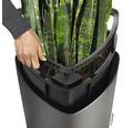 Pflanzvase Lechuza Delta Ø 30 x H 56 cm anthrazit inkl. Erdbewässerungsystem Pflanzeinsatz Substrat Wasserstandsanzeiger