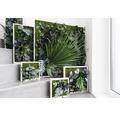 Pflanzenbild Dschungeldesign 55x55 cm