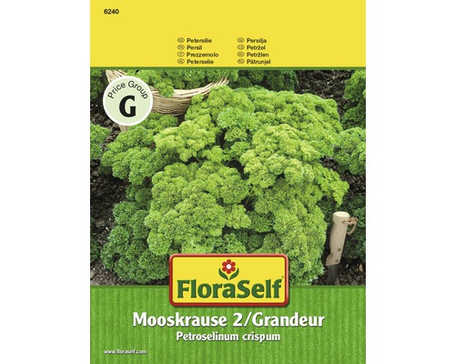 Petersilie 'Mooskrause 2 / Grandeur' FloraSelf Kräutersamen