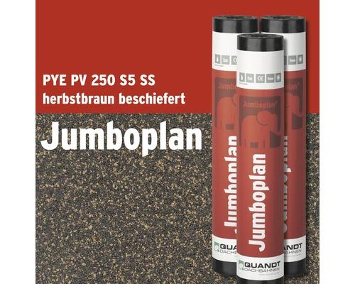Bitumen Schweißbahn Jumboplan PYE PV 250 S5 Beschiefert Herbstbraun Rolle = 5 m²