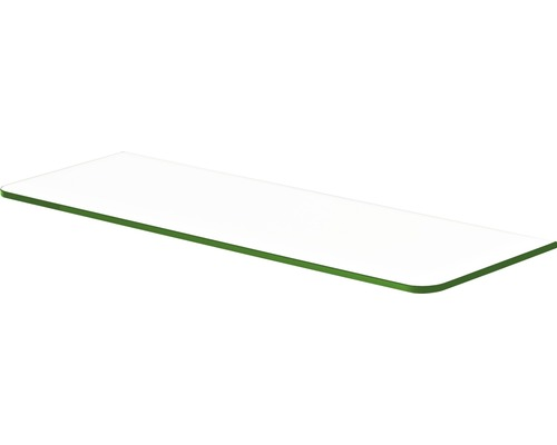 Glas-Regalboden Standard B 600 x T 200 x H 8 mm, klar