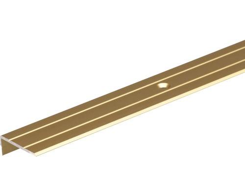 Treppenprofil Aluminium gold 24,5x20x1,5 mm, 2 m
