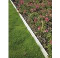 Rasenbordstein anthrazit einseitig gefast 100 x 25 x 6 cm