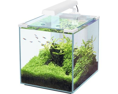 Aquarium aquatlantis Nano Cubic 30 mit Frostglasrückseite, LED-Beleuchtung, Filter, Heizer, Pumpe weiß