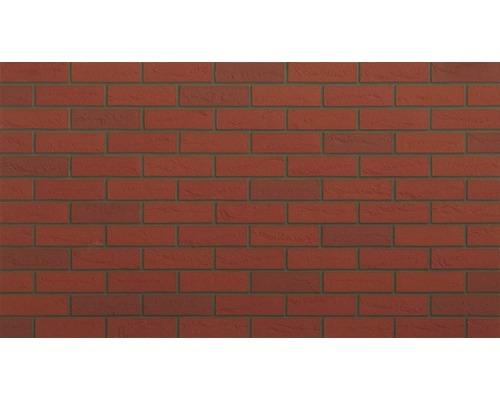 Verblendstein Rot Elastolith 24x7 cm