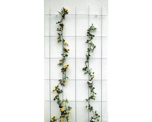 Zierspalier Lafiora Stahl 75x150 cm grau