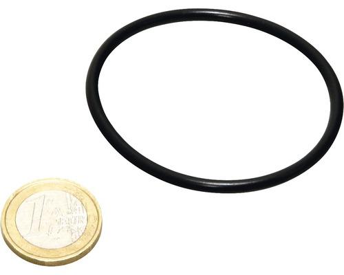 Ersatzteil O-Ring JBL UV-C 5 W