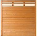 Zaunelement BuildiFix-Zauntyp B 180x180 cm kirschbaum