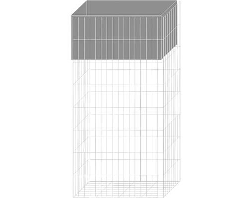 Pflanzgabione belissa mit Bewässerungskasten 40x20x80 cm