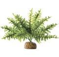 Kunststoffpflanze Exo Terra Boston Farn, klein