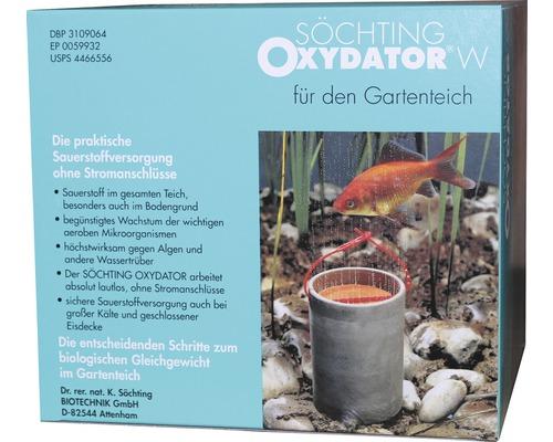 Söchting Oxydator W für den Gartenteich
