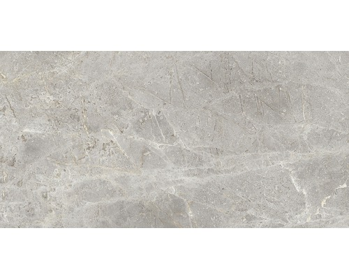 Wandfliese Tiffany grau 34 x 67 cm