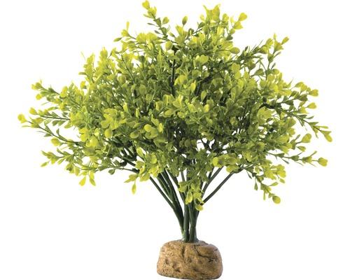 Kunststoffpflanze Exo Terra Buchsbaum