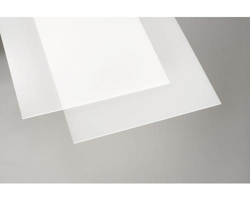 Acrylcolorplatte 3x250x500 mm glatt opal