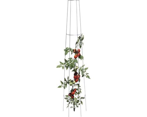 Tomaten-Rankgitter Stahl 135 x 28 cm silber
