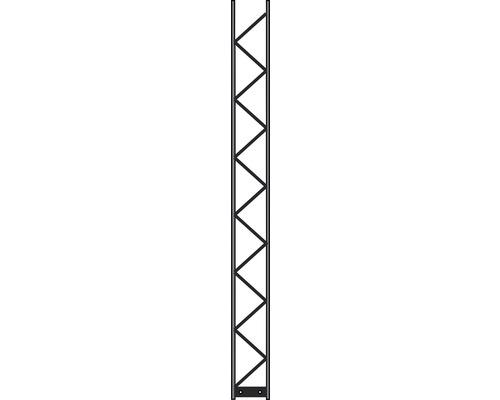 Pfosten Palo 200 20 x 220 cm, silber