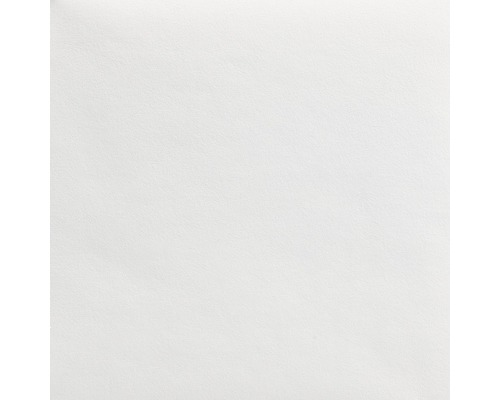 LECO Malerglasvlies PLUS vorgrundiert 130 g/m² 50 m x 1 m