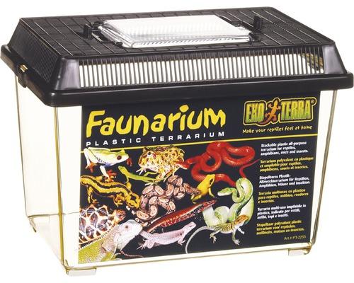 Faunarium Exo Terra 233 x 155 x 170 mm