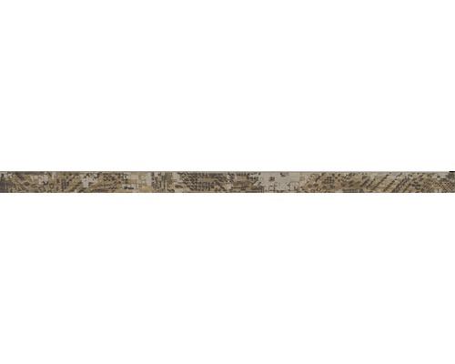 Bordüre Salvage cotto 2,5x50 cm