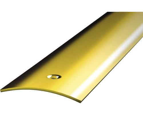 Übergangsprofil Ferro-Messing gelocht 40x2700 mm