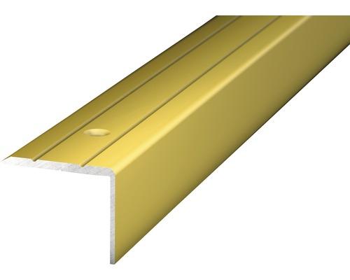 Winkelprofil Alu gold gelocht 24,5x20x1000 mm