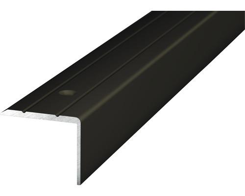 Winkelprofil Alu bronze gelocht 24,5x20x1000 mm