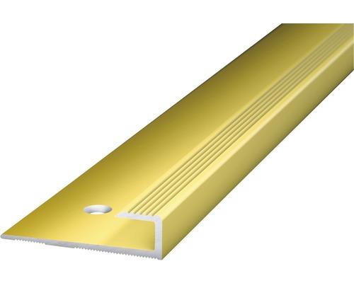 Abschlussprofil Alu gold gelocht 30x5x1000 mm