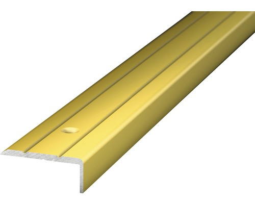 Winkelprofil Alu gold gelocht 24,5x10x2700 mm