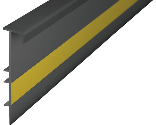 Teppichleiste Einklebeleiste mit Steg dunkelgrau 55x2500 mm