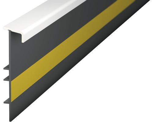 Teppichleiste Einklebeleiste mit Steg weiß 55x2500 mm