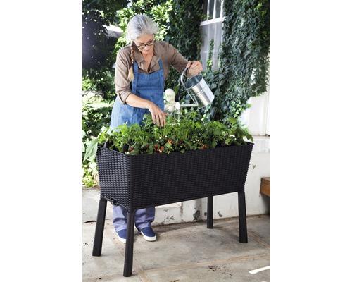 Hochbeet auf Stelzen Easy growing 114x49,3x75,7 cm anthrazit