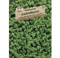 Kresse 'Einfache Grüne' Sperli Kräutersamen