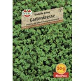 Gartenkresse 'Einfache Grüne' Kräutersamen Sperli