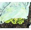 Gartenvlies 20 g/m² FloraSelf 25 x 2 m, grün