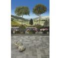 Rasenbordstein Anthrazit 100x25x5 cm