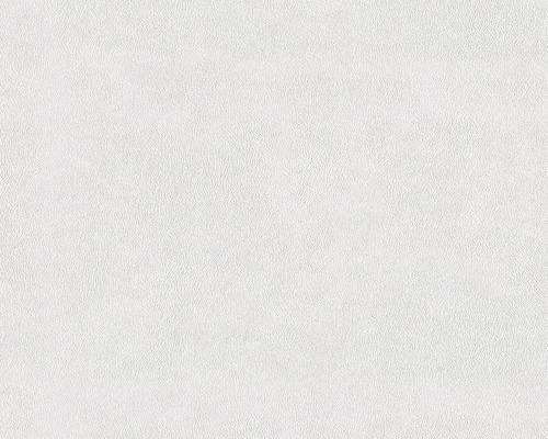 Vliestapete 3071-18 Meistervlies ProProtect Feinputz weiß