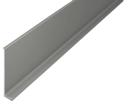 Sockelleiste Aluminium titan 11x60x2700 mm