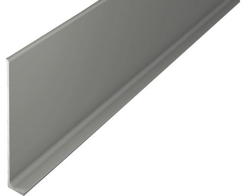 Sockelleiste Aluminium titan 11x80x2700 mm