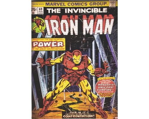 Leinwandbild Marvel, Iron Man 50x70 cm