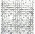 Glasmosaik XAM 77 mix silber 30x30 cm