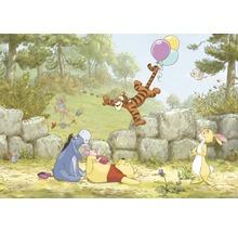 Fototapete Disney Edition 3 WINNIE BALOONING 368 x 254 cm