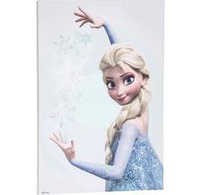 Leinwandbild Frozen Die Eiskönigin Elsa 50x70 cm
