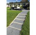 Rasenbordstein grau einseitig gefast 100 x 25 x 6 cm
