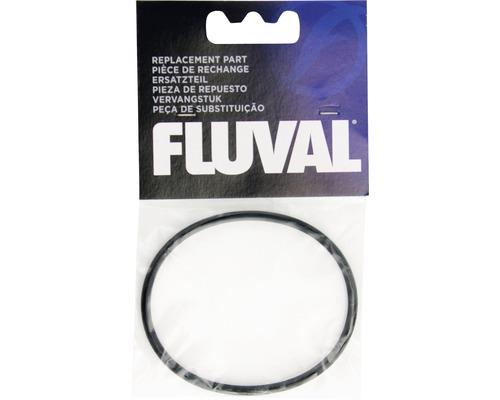 Dichtungsring Fluval FX5 für den Motor