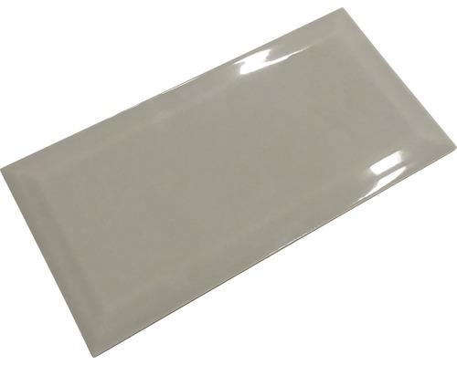 Metro-Fliese mit Facette Mist grey glänzend 10x20 cm