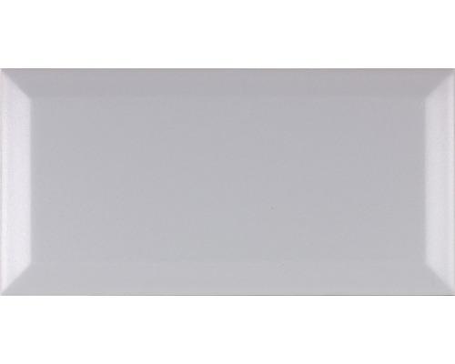 Metro-Fliese mit Facette Pizz. grau glänzend 10 x 20 cm