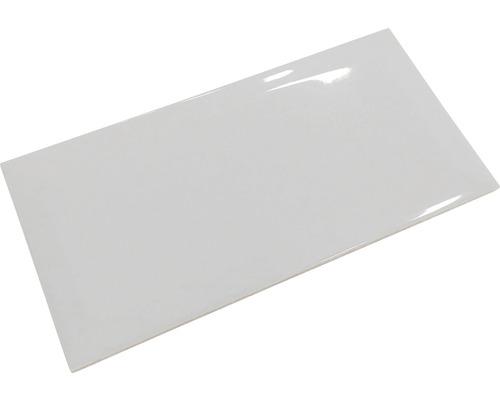 Metro-Fliese mit Facette gris glänzend 10 x 20 cm