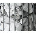 Fertiggabione belissa Pronto 102,5x23,5x195 cm