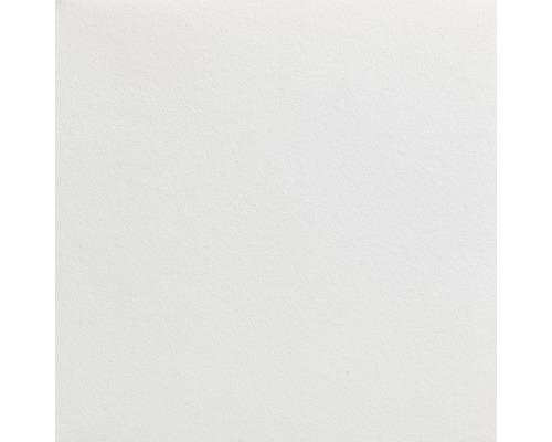 LECO Malerglasvlies weiß pigmentiert 130 g/m² 50 m x 1 m